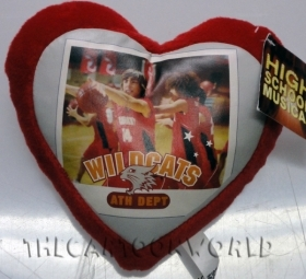 PELUCHE CUSCINO CUORE DISNEY HSM HIGH SCHOOL MUSICAL