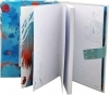 SECRET DIARY with a secret Code DISNEY FROZEN 2 Elsa and Anna